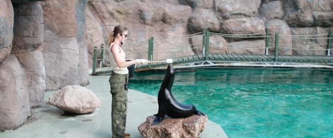 Chodź, pokażę Ci świat… Opolskie zoo