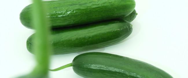 Ogórek…  zielony ma garniturek