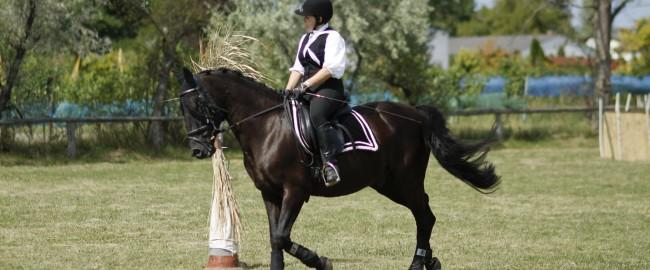 Na koń i jazda w pole!