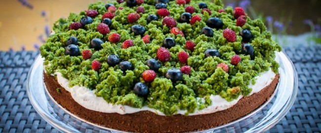 Przepis na ciasto Leśny Mech