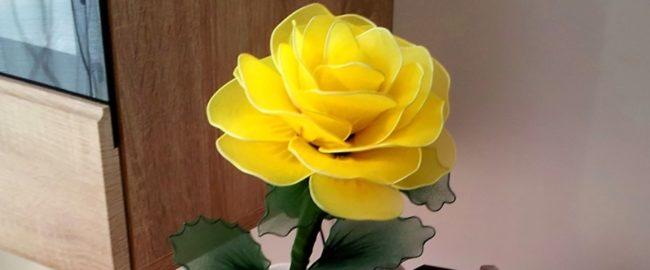 Krok do wiosny – róża z rajstop