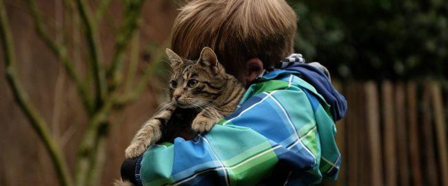 Jak nauczyć dzieci szacunku do zwierząt?