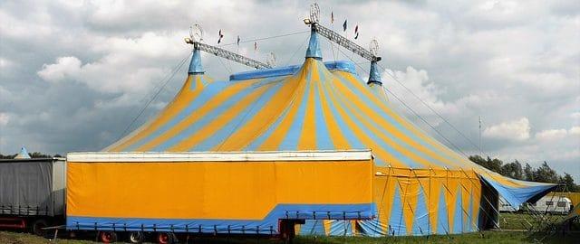 Rany, ludzie! Po co Wy chodzicie z dziećmi do cyrku?!