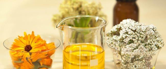 Jak zrobić macerat z ziół i kwiatów?