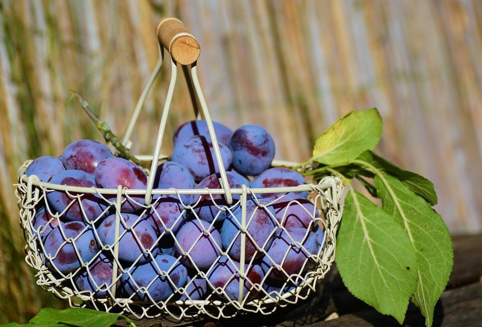 warzywa i owoce na upały