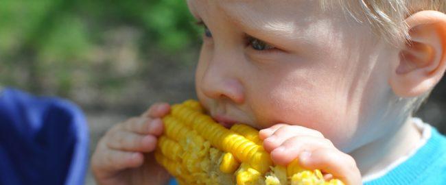 Czy dziecko musi jeść mięso?
