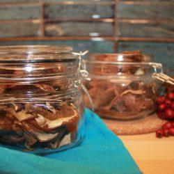 Jak suszyć grzyby: w piekarniku, suszarce, na słońcu, nad kuchenką, na kaloryferze