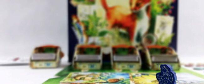 Gra Łąka – przeżyj niesamowitą przygodę