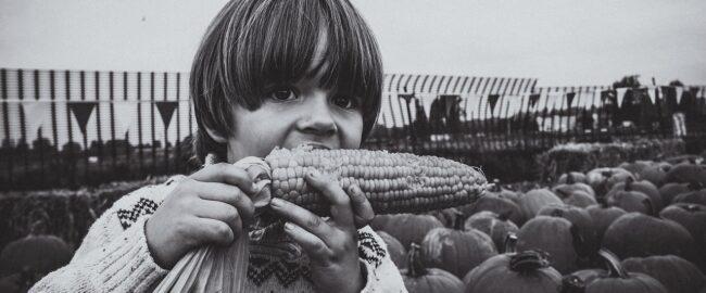 Smaki dzieciństwa – ulubione dania z czasów młodości