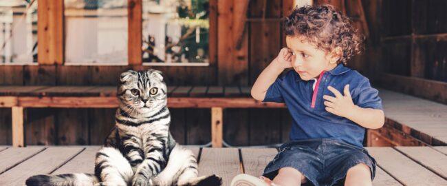 Dziecko i kot. Czy ten duet ma rację bytu?
